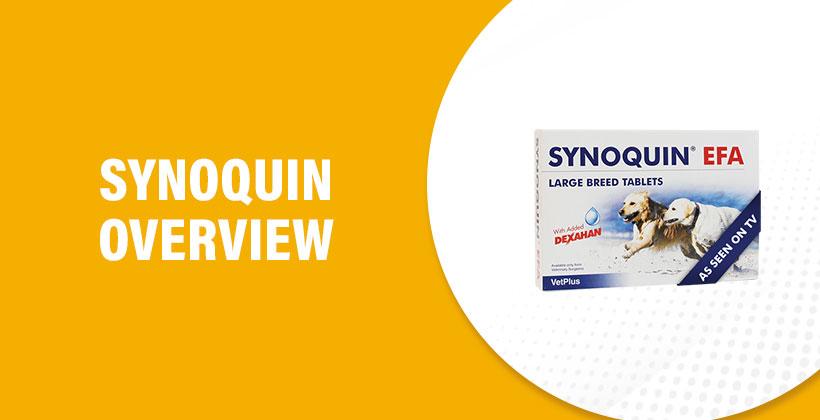 Synoquin