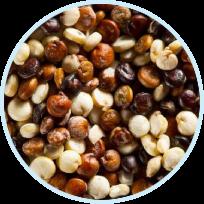 Chenopodium Quinoa Seed Extract