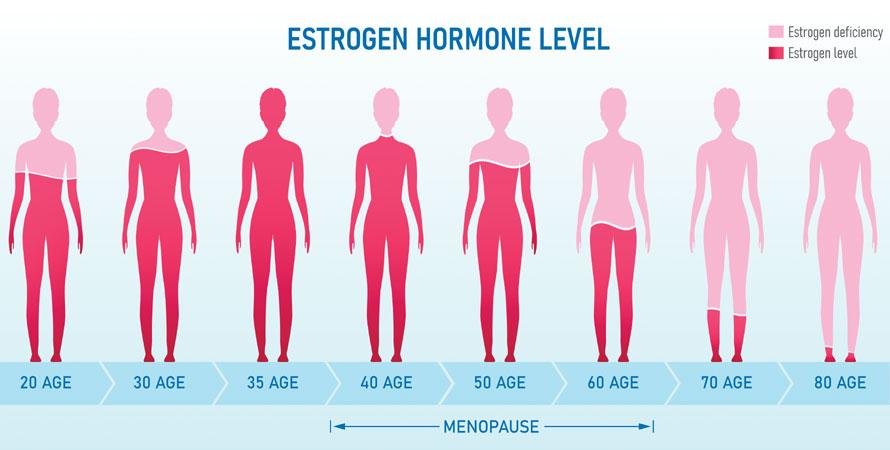 Female Hormones Level