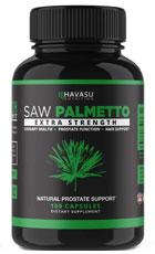 Havasu Saw Palmetto